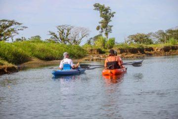 Mangrove Kayaking Manuel Antonio